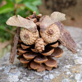 Pine-Cone-Owl-Craft-1